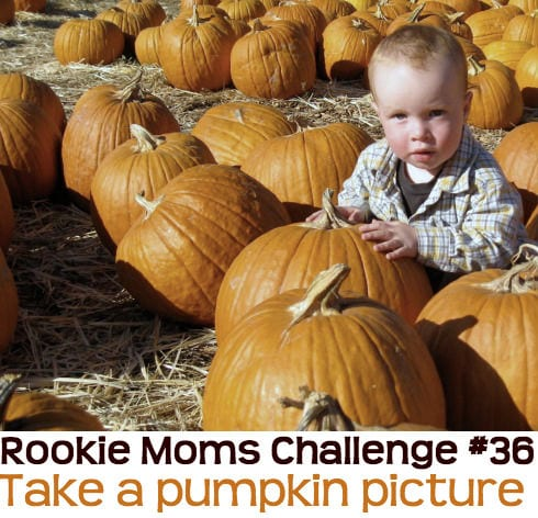 Take a photo of your baby at the pumpkin patch