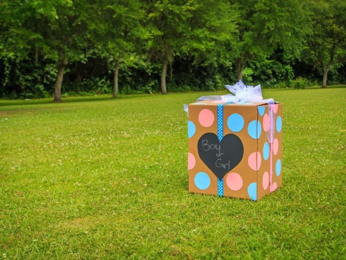 The BEST Gender Reveal Decorations + Unique Gender Reveal Ideas