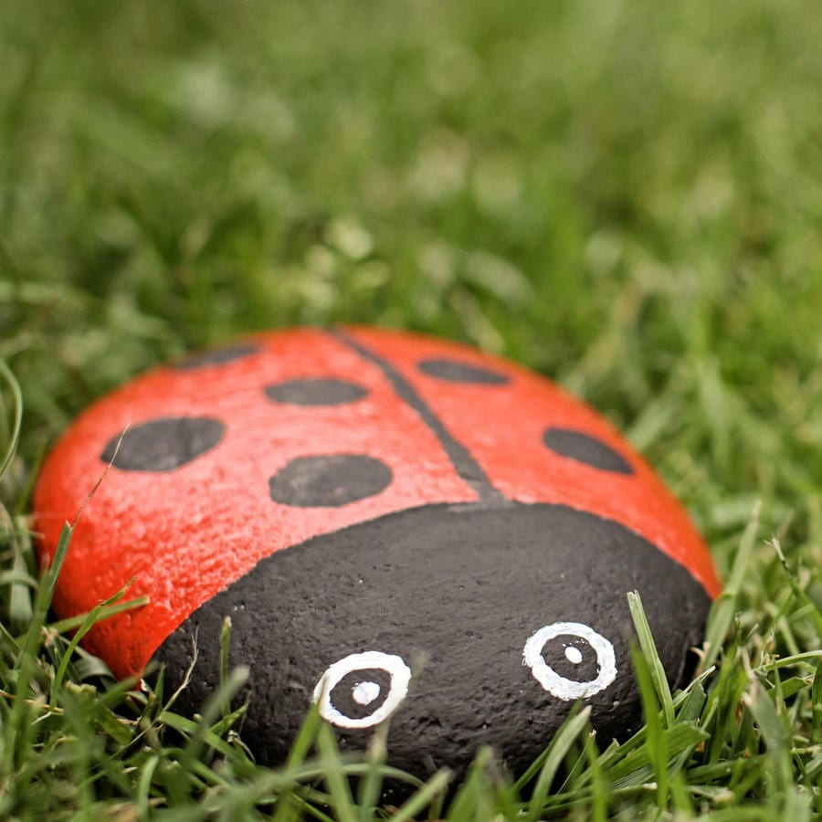 Let's Get Crafty! Easy Rock Painting Ideas easy rock painting ideas